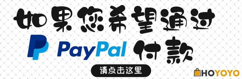 World HOYOYO PayPal付款